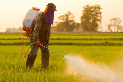 Fifteen Health Problems Linked to Monsanto's Roundup