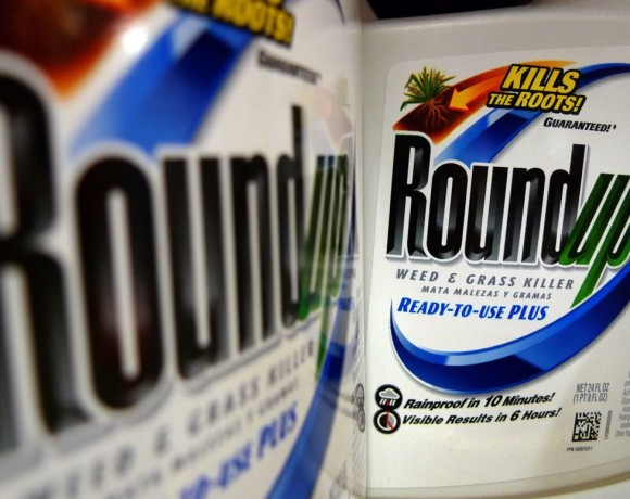 EU defers decision on extending approval of herbicide ingredient glyphosate