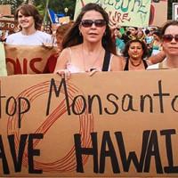 Hawaii Citizens Beat Monsanto, Bypass 'Right to Spray' Pesticides Bill