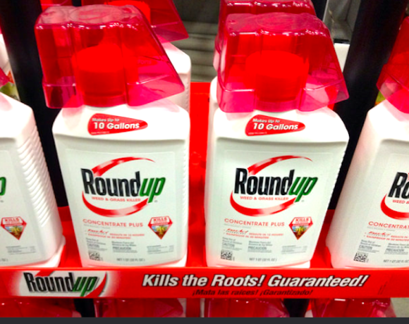 Soil Association publishes review of soil research ahead of glyphosate vote