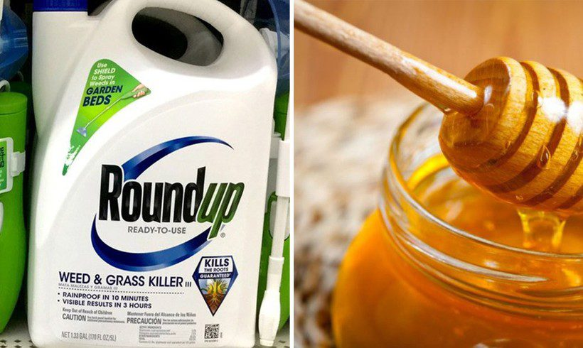 FDA Finds Glyphosate in Honey