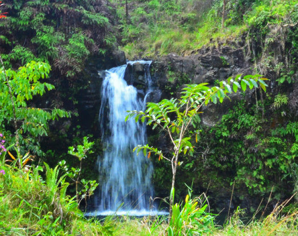 Water issues – A&B and the future of Maui