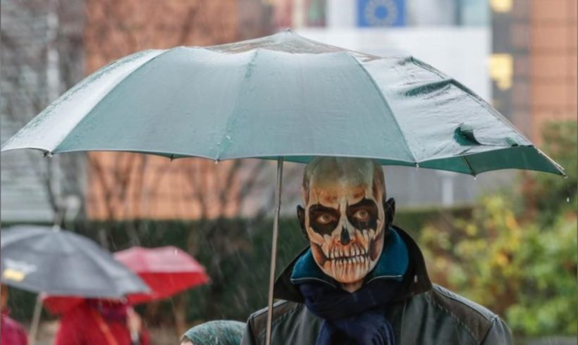 Environmentalists say they'll try to sue German, EU authorities over glyphosate
