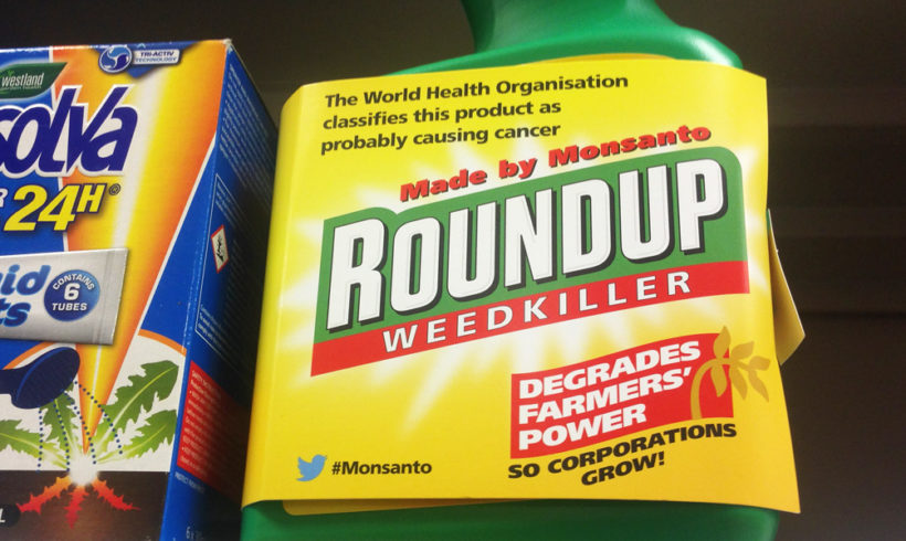 European authorities violated own rules to conclude glyphosate is not carcinogenic