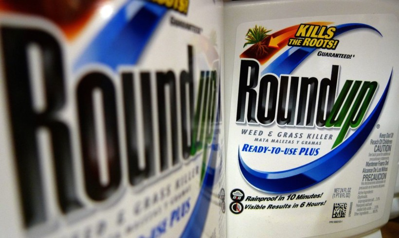 DID YOU EAT ROUNDUP TODAY?