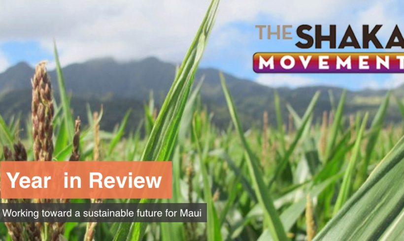 SHAKA Movement – Year in Review