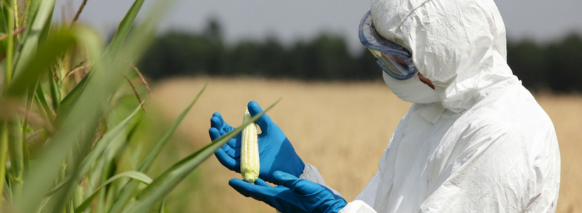 THE ORGANIC FOOD AND FARMING MOVEMENT CALLS FOR THE REGULATION OF NEW GENETIC ENGINEERING TECHNIQUES AS GMOS