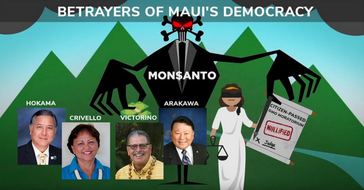 Betrayers of Maui Democracy Ask Voters to Re-Elect Them This November